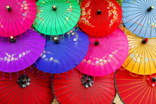 Asian Umbrella's
