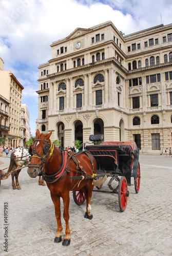 Fotografija  horse and carriage on plaza in havana cuba