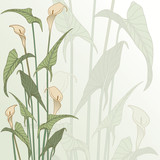 framework from calla lily