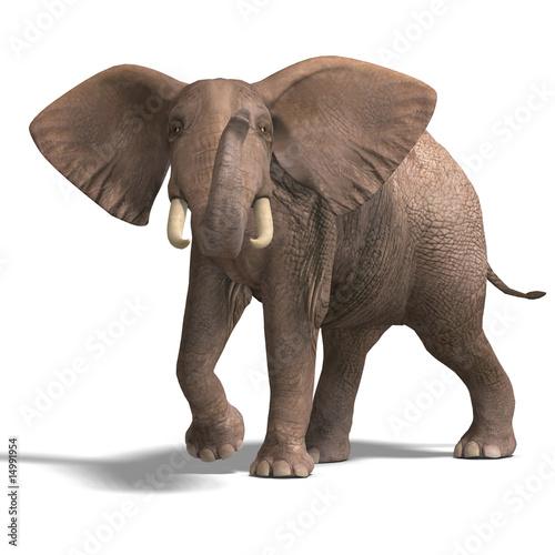 huge elephant Wallpaper Mural