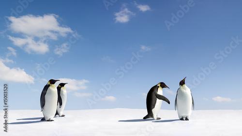 Photo sur Toile Pingouin Rejection
