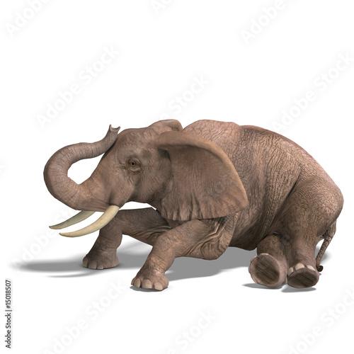 Foto op Aluminium Olifant huge elephant