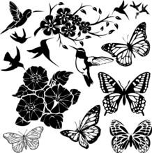 Birds, Butterflies And Flower ...