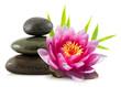 canvas print picture - Composition zen, pierres, lotus et bambou