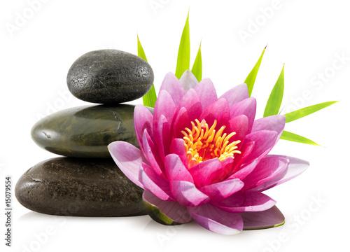Doppelrollo mit Motiv - Composition zen, pierres, lotus et bambou