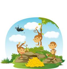 Obraz na płótnie Canvas monkeys