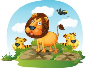 Obraz na płótnie Canvas animals