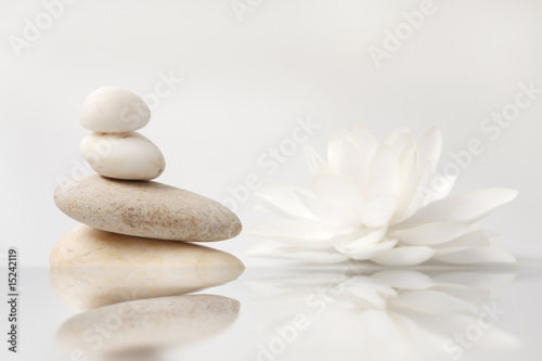 Poster Waterlelies wellness still life: pebbles and white lily, reflection
