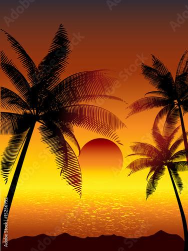 Foto-Rollo - Tropical scene