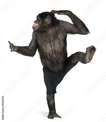 Foto op Aluminium Aap monkey dancing on one foot