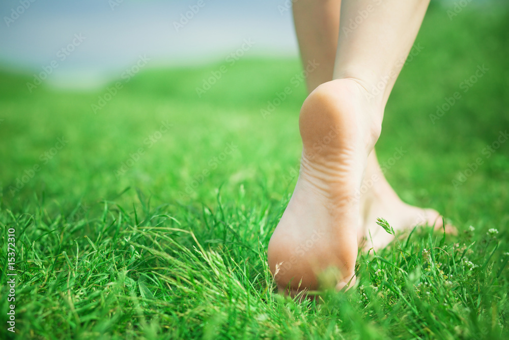 Fototapety, obrazy: Woman legs on green grass