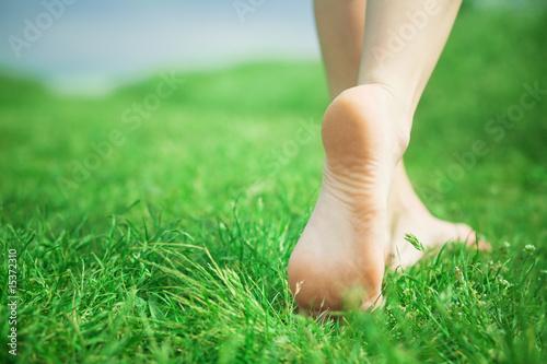 Valokuva Woman legs on green grass