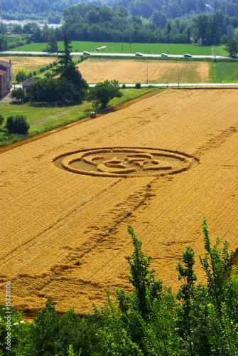 Poster UFO Cerchi nel grano