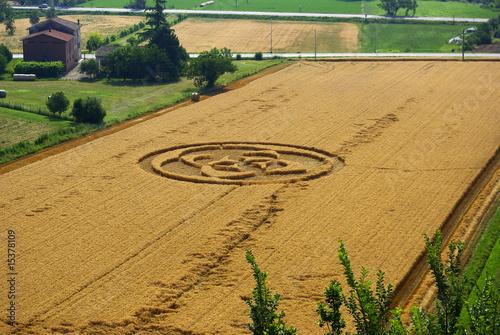 Foto op Canvas UFO Cerchi nel grano 2