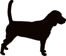 Beagle Hound Dog Silhouette