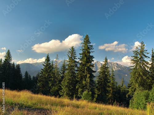 View of Tatra