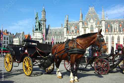 Wall Murals Bridges Brugge. Horse-driven cab.