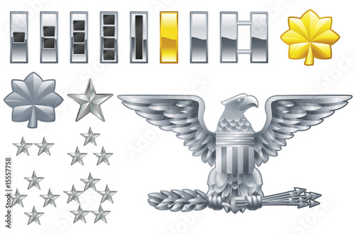 Cuadros en Lienzo american army officer ranks insignia icons