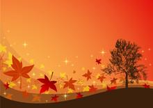 Autumn Tint Background