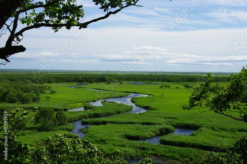 Valokuva  釧路湿原