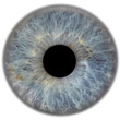 canvas print picture - eye3