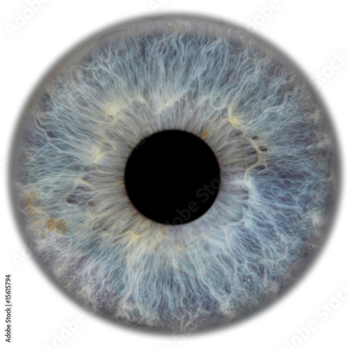 Deurstickers Iris eye3