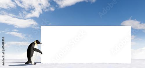 Photo sur Toile Pingouin Sign