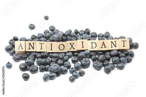 Antioxidant Blueberries Canvas Print