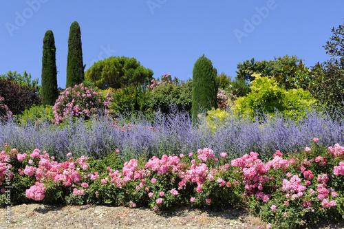 Poster Lavender jardin provençal