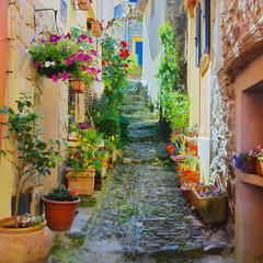 Fototapeta Uliczki Ruelle étroite et colorée dans un village de Provence