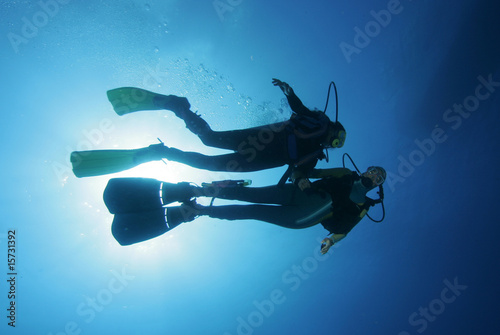 Printed kitchen splashbacks Diving Taucher im freien Wasser|Divers in the water|