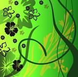 tło zielone