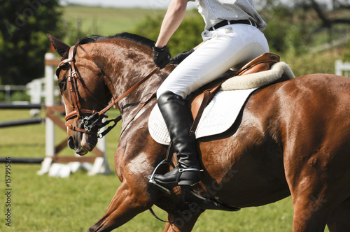 La pose en embrasure Equitation Pferdebeine