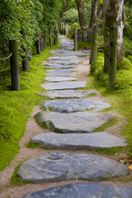 Lonely Stone Path