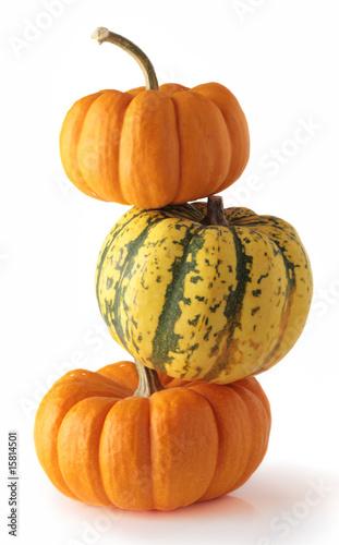 Fotografie, Obraz  three colorful pumpkins