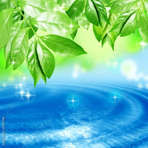 Akustikstoff - 水面にゆれる葉