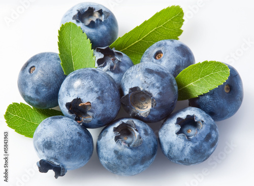Bilberry on a white background Fototapet