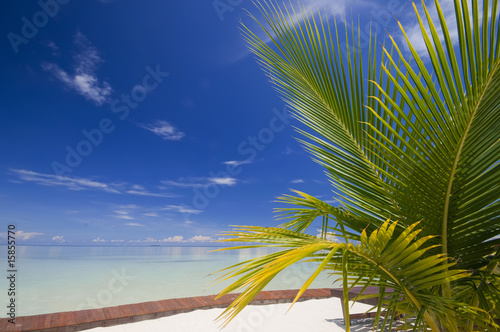 Foto-Rollo - Perfect tropical island relaxation.