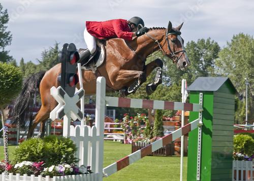 Fotomural Jinete y caballo