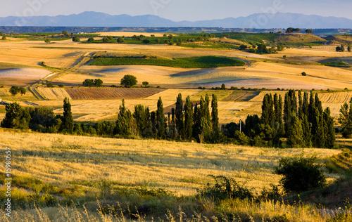 landscape near Penaranda de Duero, Burgos Province, Spain