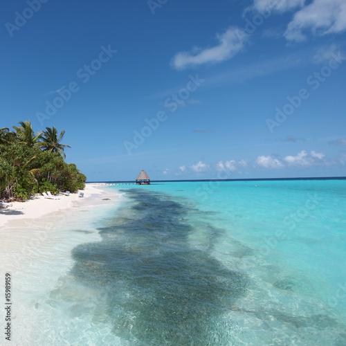 Foto-Kissen - Fischschwarm am Strand von Angaga - Shoal at Angaga beach (von tagstiles.com)