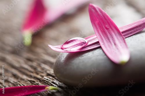 Akustikstoff - Flower petals