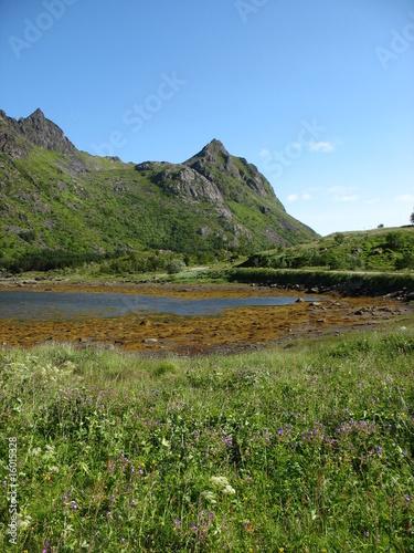 Photo  Lofoten - Norvège