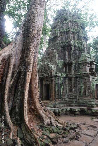 In de dag Bedehuis Temple Khmer, Ta Phrom