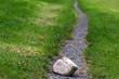 Leinwandbild Motiv Steine im Weg
