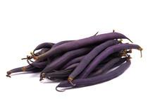 Asparagus Kidney Bean, Studio White