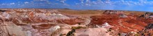 Petrified Forest Panorama