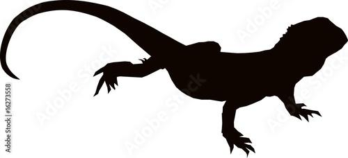 Платно Australian Bearded Lizard Silhouette
