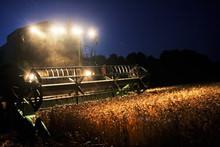 Combine Harvester In The Cornf...