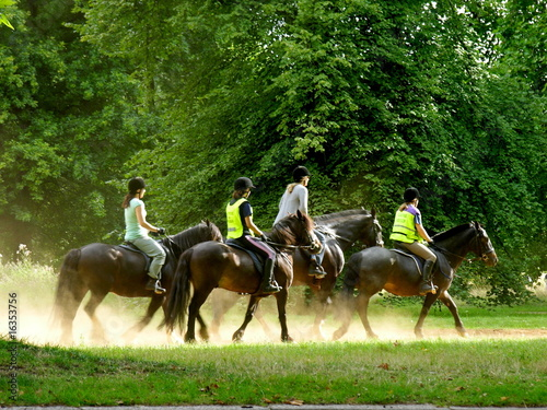 La pose en embrasure Equitation Riding in the park
